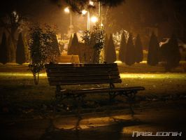 Lonely Bench... by Naslednik