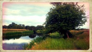 Nenagh River 1 by PicTd
