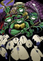 Teenage Mutant Ninja Turtles by Hesstoons