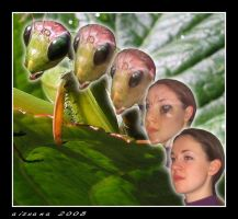 Praying Mantis Morph by Aizxana