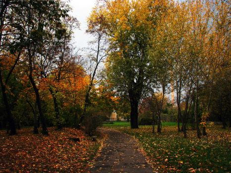 Autumn leaves by PostaL2600