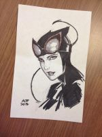 Catwoman pen sketch by Ace-Continuado