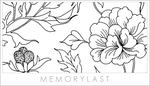Chinese Floral Brushes by memorylast