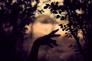 Hands by cycoevolution