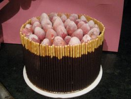 Pocky Cake by MoonshineMustardseed