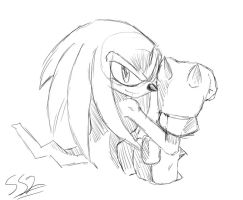 Knuckles :Sketch: by ss2sonic