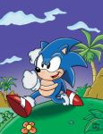 Sonic Adventures by SlySonic