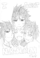 I support NaruHarem by MikaGx