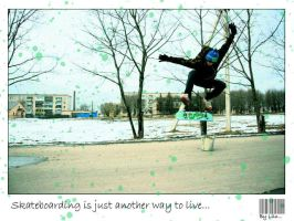 Skate for live... by VinilLilly