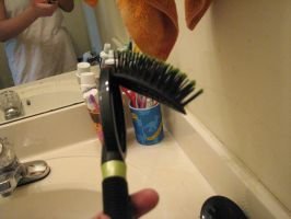 Oh God what happened to my hairbrush. by pallaza