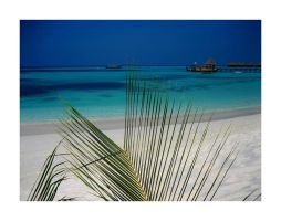 Maldives by Pecetta