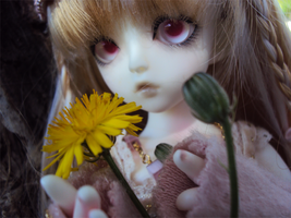 BJD - A flower for you by AidaOtaku