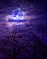 Full Moon in the Night Sky by SeansDigitalArts
