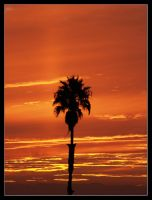 Sunset California by sunsetchaser