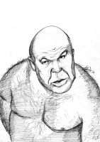 George The Animal Steele by Bardsville
