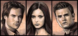 THE VAMPIRE DIARIES by S-von-P