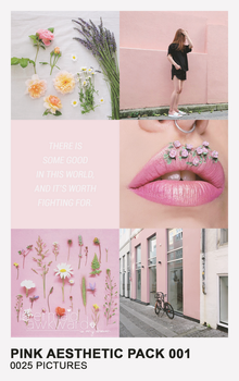 Pink Aesthetic Pack 001 by Mermaid Awkward by MermaidAwkward
