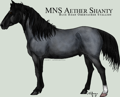 MNS Aether Shanty by chaoticXinsane