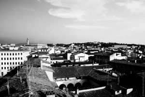 Rooftops by MDelicata