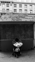 Flowers by sykosys