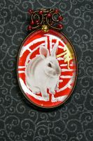 Hong Bao Bunny by magpie-poet