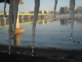 Icicles on the Han by DJ-Catsume