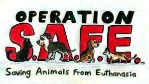 Operation S.A.F.E by wahyawolf