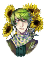 Sunflower by Enzo18