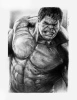 The Avengers - Hulk by reniervivas666