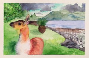 A Llama for my Trouble? - Watercolor Card by ColaChu