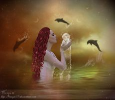 The dream of the Dolphin by Marjie79