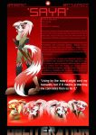 Saya's charcter profile by GoneIn10Seconds