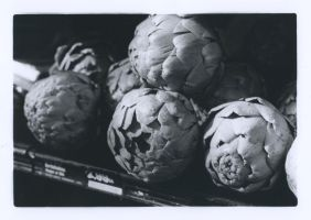Darkroom Artichokes by LaraCraft9
