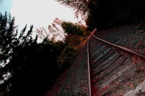 Tracks_2 by SavanaAshleigh