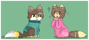 Sweaters by Cushies
