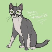 Francis by aThousandPaws