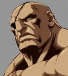 Character Select- Sagat by UdonCrew