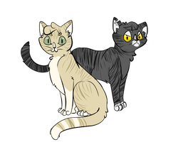 longtail and darkstripe by honey-bee