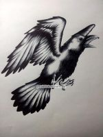 Crow Commission by Petah55