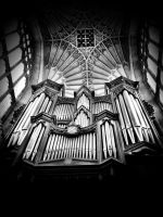 The Organ by Nihriyra
