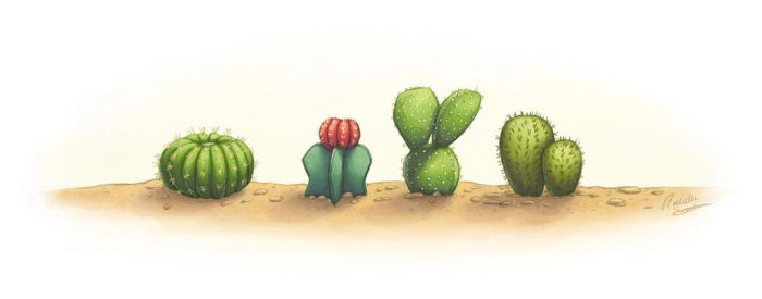 Mini Cacti by RochelleSteder