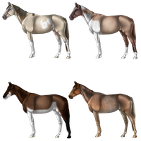 Semi-Natural Horse Adopts 1 by Quickdopts