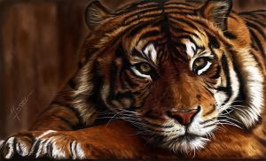 painting tiger by Ineer