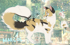 Marcos Ref:// Cat.png by overIord