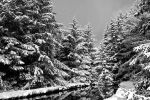 World of Snow by bens1n