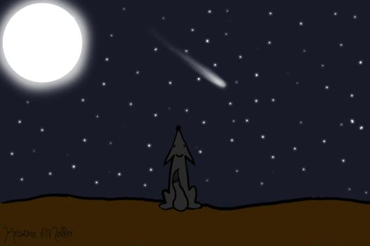 Wish when you see a shooting star by MagicalPictureMaker