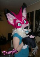 Fursuit head finished by OnJedone