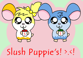 .:Roxy + Ray:. .:SlushPuppie:. by RoxysSlushPuppie