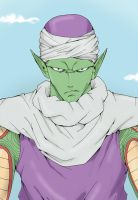 Piccolo by TheFresco