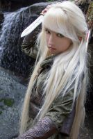 Mirkwood Elf 8 by Liancary-Stock